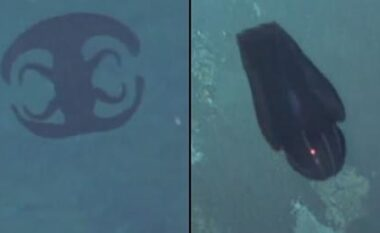 Shfaqet në mes të oqeanit krijesa gjigante, ndryshon formë dhe zmadhohet nën ujë (VIDEO)