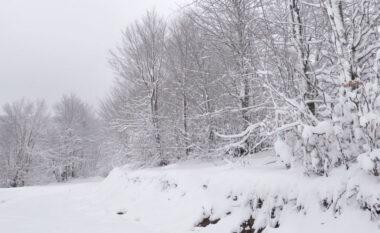 Reshje dëborë në veri dhe juglindje, bllokohen zonat e thella