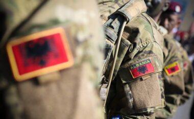 Humbi jetën në krye të detyrës, qeveria i jep 10 milionë lekë familjes së ushtarakut shqiptar