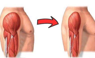 6 gabime të zakonshme që ju bëjnë të humbni masë mushkore, jo dhjamin