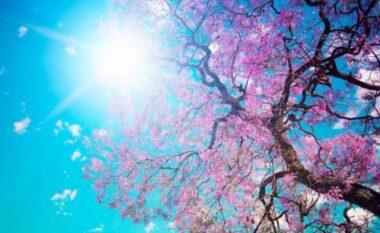 Bëhuni gati për pranverën e vërtetë, mësoni si do të jetë moti gjatë fundjavës