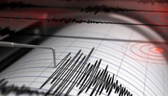 Tërmeti shkund Korçën