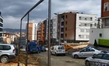 Vrasja e dyfishtë në Prishtinë, Policia jep detajet