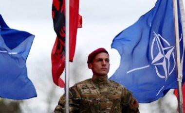 12 vjetori i anëtarësimit në NATO, ambasada amerikane: Shqipëria dhe SHBA-ja mund të mbështeten te njëra-tjetra