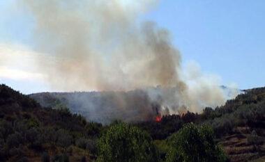 Ullishtet e Levanit përfshihen nga flakët, zjarrëfikësit futen në këmbë për ta shuar