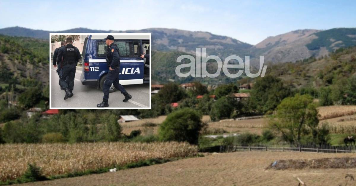 E FUNDIT/ Të shtëna me armë zjarri në Elbasan