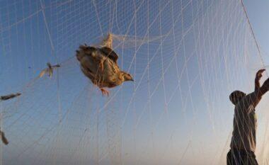 Izraeli mbyll zonën e peshkimit në Rripin e Gazës