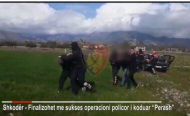 Sekuestrohen 20kg hashash dhe fara kanabis, arrestohet 4 persona në Shkodër