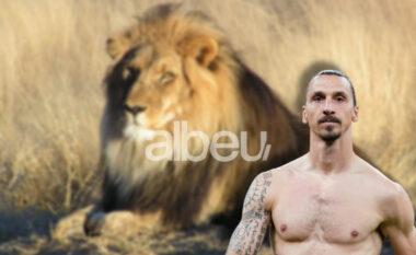 """Ibrahimovic po cilësohet një """"zero"""" në vendlindjen e tij, ka vrarë një luan"""