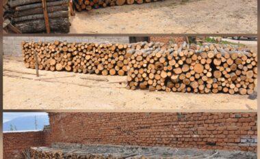 Prerje e paligjshmee pyjeve dhe fshehje të ardhurash, procedohen 7 persona në Korçë
