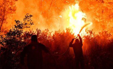 Zjarri në Greqi, digjen më shumë se 40 mijë hektarë tokë