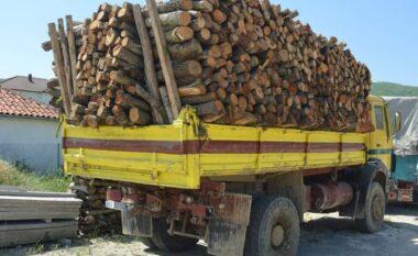 Prenë pyjet pa leje, 2 të arrestuar dhe 2 të proceduar në Pogradec
