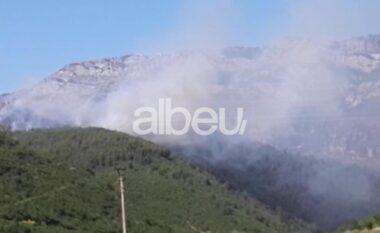 Zgjerohet vatra e zjarrit në Borizanë të Krujës