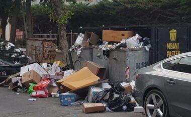 Kolapsi me plehrat në Durrës, kompania private i vjen në ndihmë Bashkisë për pastrimin e tyre