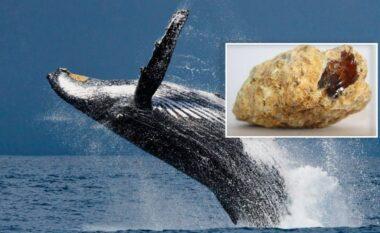 Iu qeshi fati: Peshkatarët e varfër gjejnë një thesar në barkun e balenës