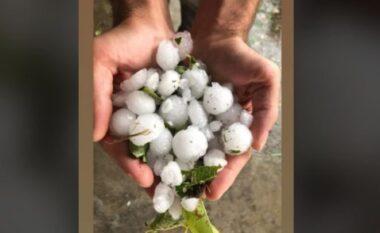 Stuhia e breshërit godet Elbasanin, dëmtohen të mbjellat