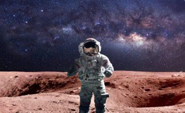 Agjencia Evropiane e Hapësirës: Më shumë se 22,000 njerëz duan të bëhen astronautë
