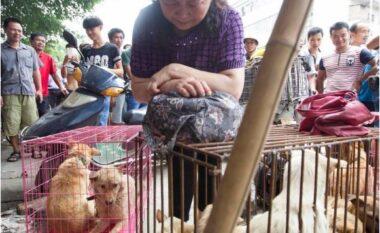 Festivali kinez, më shumë se 5 mijë qenë do të vriten dhe do të hahen gjatë 10 ditëve