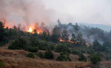Tjetër vatër zjarri në jug të Shqipërisë, dalin jashtë kontrollit flakët në Këlcyrë