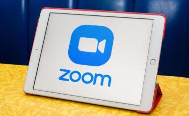 """""""Zoom"""" trefishon të ardhurat nga pandemia"""