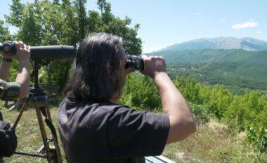 DW: Në kufirin Shqipëri-Greqi lulëzon kontrabanda e kanabisit
