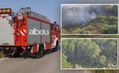 Temperaturat mbi 40 gradë, Ministria e Mbrojtjes thirrje strukturave: Qëndroni gati për menaxhimin e zjarreve