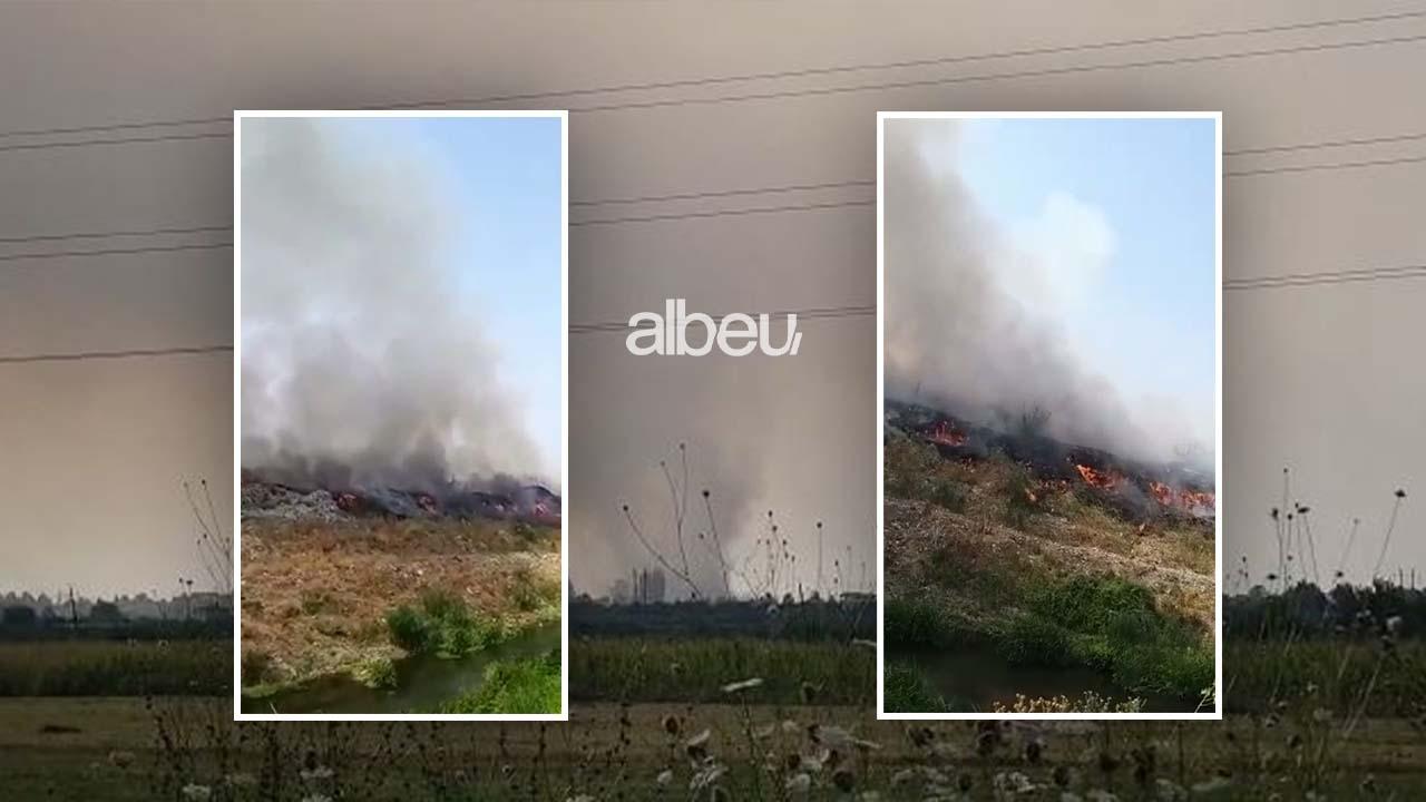 """Situatë alarmante në Fier nga djegia e plehrave, tymi toksik """"pushton"""" qytetin (VIDEO)"""