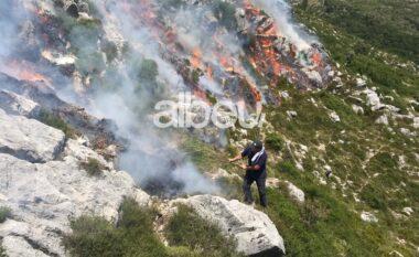 Zjarret në vend: KLSH zbret në terren, po verifikon tenderat nëse janë blerë pajisjet