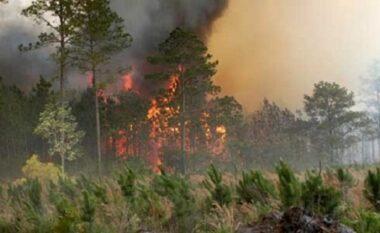 Prej dy ditësh aktiv, zjarri në Përmet djeg hektarë me kullota e pyje
