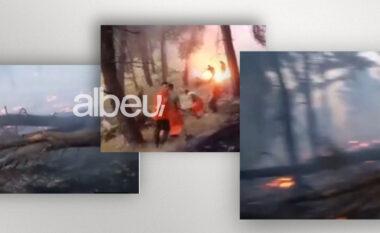 Zjarri nuk ka ndërmend të shuhet në pyllin e Gjorgozi, dëmtohet një numër i madh bimësh shekullore