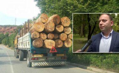DETAJET/  Aksidenti ku humbi jetën drejtori i Shërbimit Pyjor, policia arreston shoferin e kamionit
