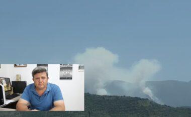 Zjarri në Malin e Tomorrit, flet drejtori ADZM Berat: Kemi neutralizuar vatrat e mëdha