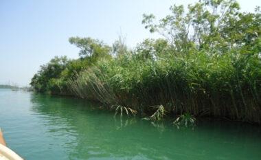 Po lahej me familjarët, 7-vjeçarja mbytet në lumin Buna