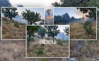 Sërish zjarr në Vlorë, aktivizohet një vatër në Tragjas