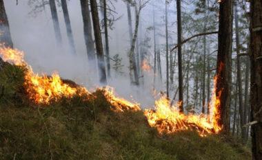 Situatë problematike nga zjarret në vend, prefekti i Tiranës kërkesë bashkive: Merrni masa, do të kemi situatë me rrezik të lartë