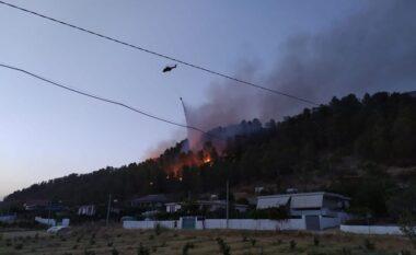 Zjarret, Peleshi: Çdo veprim i qëllimshëm do të ndëshkohet pa mëshirë