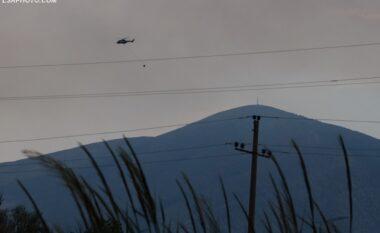 Peleshi: Izolohet dhe shuhet zjarri në Karaburun