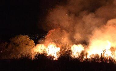Rrezikoheshin 10 banesa, shuhet zjarri në Shkodër (VIDEO)