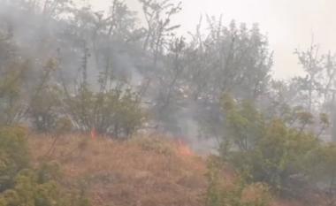 Dogjën 5 hektarë kullotë, identifikohen 3 të dyshuarit që i vendosën zjarrin Gjirokastrës