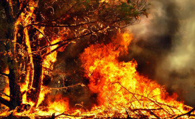 Nuk shpëton as Franca: Zjarr i madh në Saint Tropez, evakuohen banorët dhe turistët