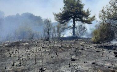 """Pamjet e """"ferrit""""! Digjen pyjet në Dukat, zjarri i afrohet Llogarasë (FOTO LAJM)"""