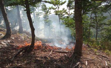 Situata e zjarreve në vend, Haki Çako: Të gjithë strukturat janë në terren, këto janë zonat problematike