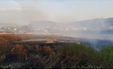 EMRAT/ Hodhi cigaren në tokë e ndezi vatër zjarri, dy të proceduar penalisht në Berat