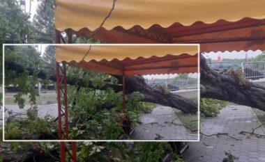 Dalin pamjet! Pas të nxehtit përvëlues, stuhia godet Kroacinë duke shkaktuar dëmtime e kaos (VIDEO)