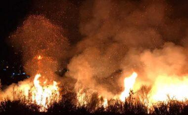 Zjarri në Gjirokastër, flet kreu i zjarrëfikëses: Po punojmë me pompa shpine, është terren i vështirë