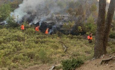 Vendosen në kontroll vatrat e mëdha të zjarreve, Peleshi: Problem mbetet Karaburuni