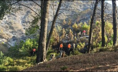 Dogji gati 10 hektarë pyje, shuhen vatrat e zjarrit në Përmet