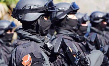 RENEA blindon Shqipërinë: 4 të arrestuar e 21 të proceduar penalisht për vepra të rënda penale (VIDEO)