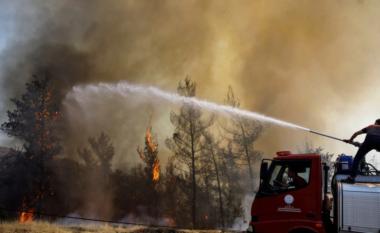8 të vdekur nga zjarret në Turqi