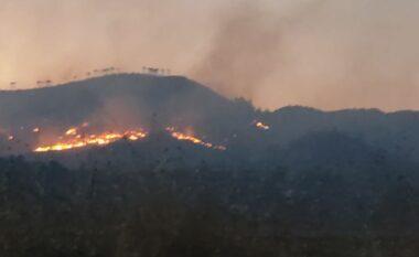 Mali i Shëngjinit përfshihet nga zjarri, alarmohen turistët e banorët